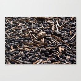 Yaquina Head Rocks and Driftwood Canvas Print