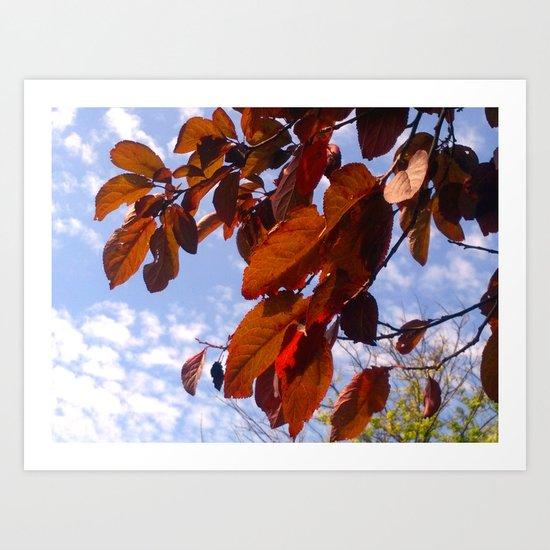 Autumn is in the Air Art Print