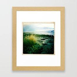 sea grass Framed Art Print