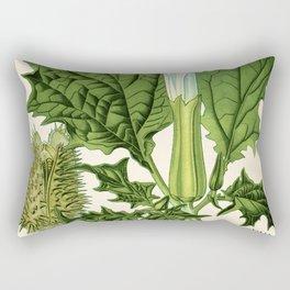 Datura stramonium (thorn apple - jimson weed or devil s snare) - Vintage botanical illustration Rectangular Pillow
