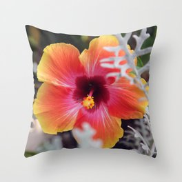 Hibiscus and Dusty Miller Throw Pillow