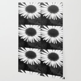 Fleur noir & blanc - Flower black & white Wallpaper