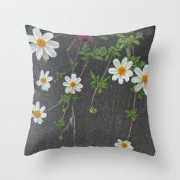 Stacey Throw Pillow