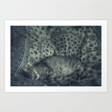 Porcelain Sleeping Cat Art Print