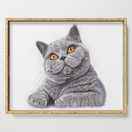 British shorthair Serving Tray