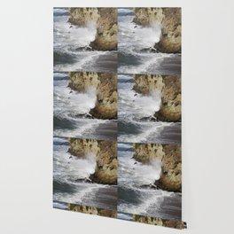Shell Beach California Wallpaper