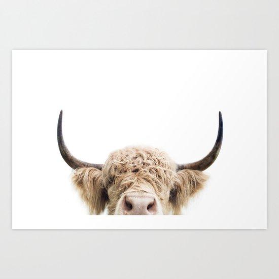 Peeking Highland Cow by katypie