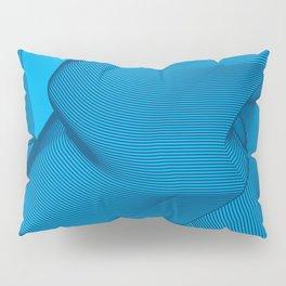 Self-Mastery Pillow Sham