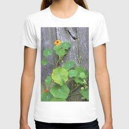 The Garden Wall T-shirt