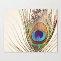 peacock Canvas Prints featuring Peacock by Laura Ruth