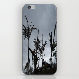 Dusk on the Island iPhone Skin