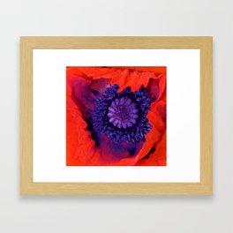 Macro Poppy Framed Art Print