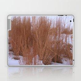 Winter Grasses Laptop & iPad Skin
