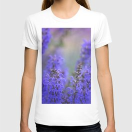 waiting for lavender blossoms T-shirt