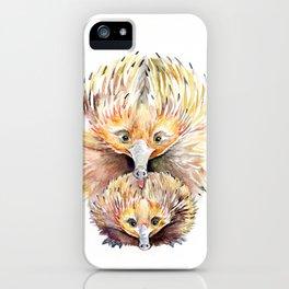 Enigmatic Echidnas iPhone Case