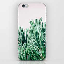 A Gathering of Cacti iPhone Skin