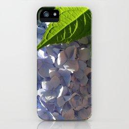 Sunny Blue Hydrangea iPhone Case