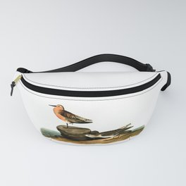 Sandpiper Drawing Vintage Illustration Fanny Pack