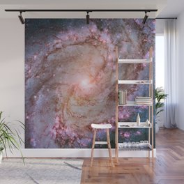 Twins of Superstar Eta Carinae Wall Mural