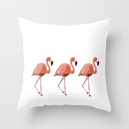 A Flamboyance of Flamingoes - Flamenco - 57 Montgomery Ave Throw Pillow
