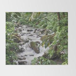 Smaller stream - Caimitillo river in upper El Yunque rainforest PR Throw Blanket