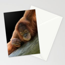 Smiling Young Orangutan Stationery Cards