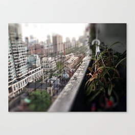 Urban Oasis Canvas Print