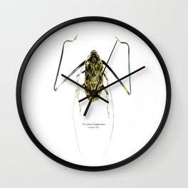 Acrocinus II Wall Clock