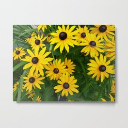Yellow nature Metal Print