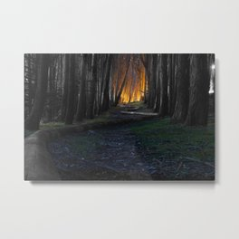 Haunted Forest and Andrew Goldsworthy Sculpture Metal Print