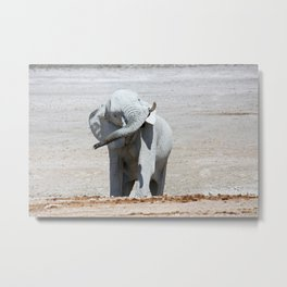 NAMIBIA ... Elephant fun I Metal Print