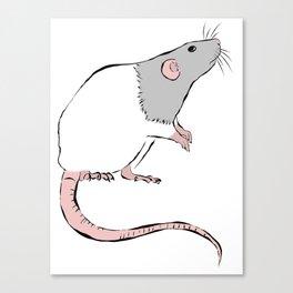 Rattie Canvas Print