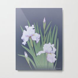 Japanese Water Iris Metal Print