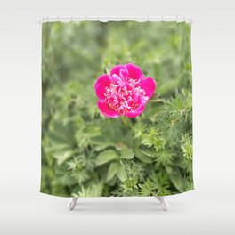 Lonely peony Shower Curtain