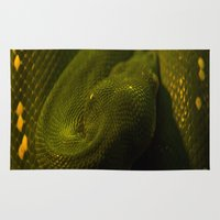monty python Area & Throw Rugs featuring basking python by Claes Touber