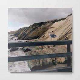 Dock Gull Metal Print