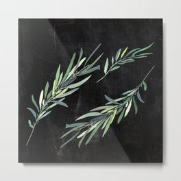 Eucalyptus leaves on chalkboard Metal Print