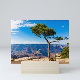 Grand Canyon pine tree Mini Art Print