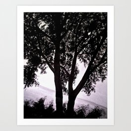 Lake Tree Art Print