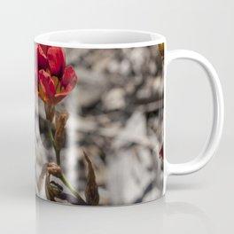 Little Sparaxis Coffee Mug