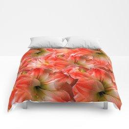 Pink & Red Amaryllis Patterns Floral Art Comforters