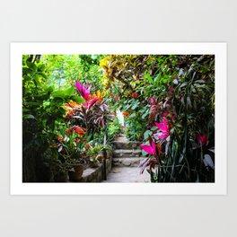 Dreamy Mexican Jungle Garden Art Print