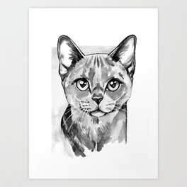 Cat portrait in Black and White Art Print