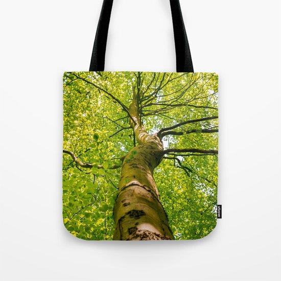 Sunlight Through Green Tree Crown Tote Bag