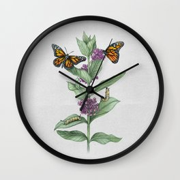 Monarch Butterfly Life Cycle Wall Clock