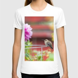 Meal Planning For Hummingbirds T-shirt