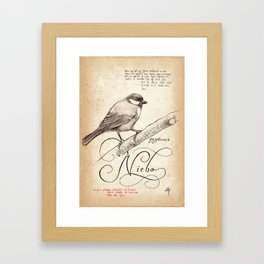 BIRD 05  Framed Art Print