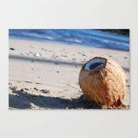 coconut wishes Canvas Prints featuring Coconut. by TabathaYoast