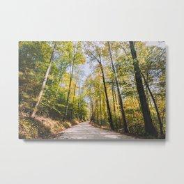 Forest Road - Muir Valley, Kentucky Metal Print