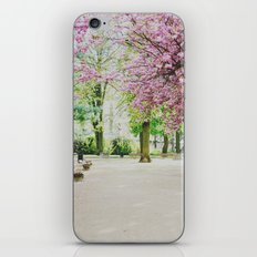 french cherry blossom iPhone & iPod Skin